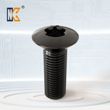 Raised countersunk head torx screw